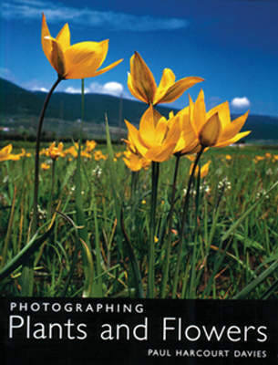 Photographing Plants and Flowers