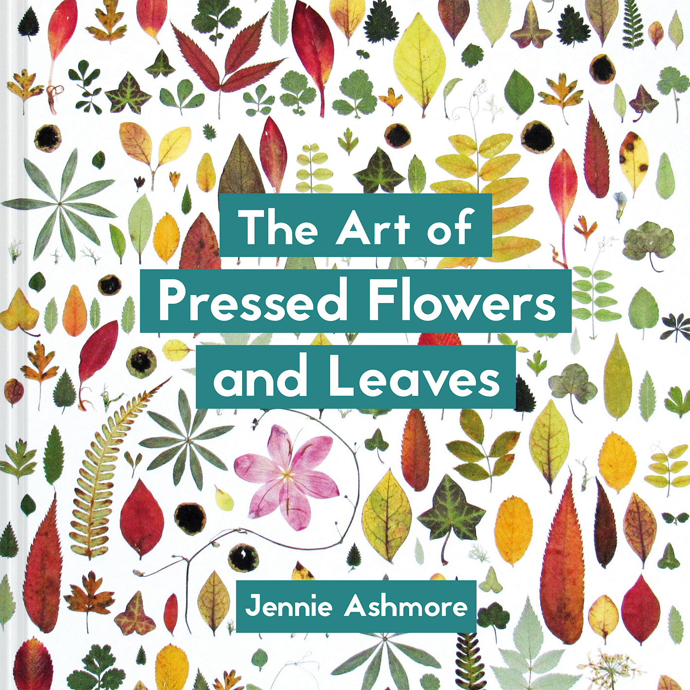 The Art of Pressed Flowers and Leaves